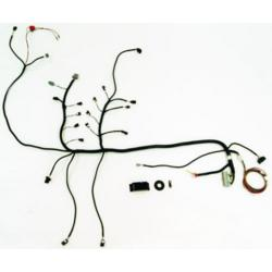 5 0 Mustang Engine Swap moreover Wiring Harness Casing besides 84 Toyota 22r Carbureted Wiring Diagram moreover Mercedes E55 Amg 2005 Engine further Viper Wiring Diagram. on mustang wiring harness kits