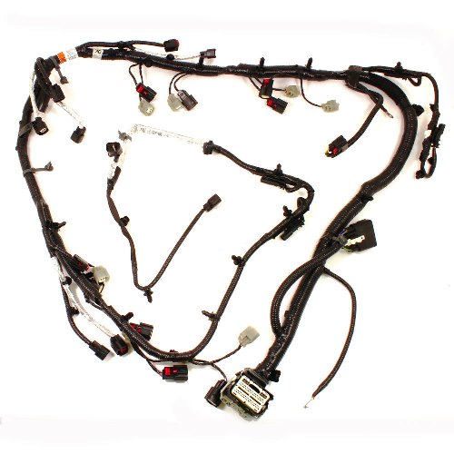 5.0L COYOTE ENGINE HARNESS| Part Details for M-12508-M50 ... on ford coyote hoses, ford coyote throttle body, ford coyote oil pump, ford coyote timing chain, ford coyote engine, ford coyote driveshaft, ford coyote motor,